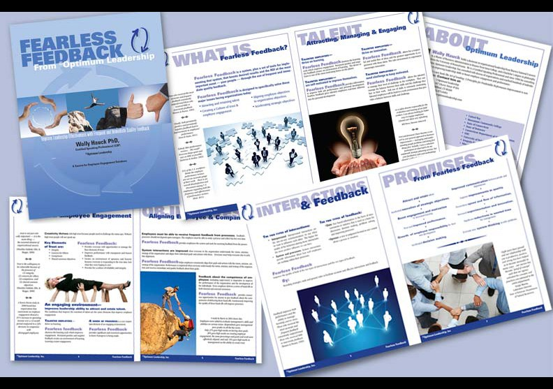 Fearless Feedback Brochure